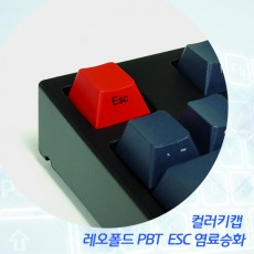 레오폴드 PBT  ESC 염료승화 컬러키캡 - 영문측각(정면)